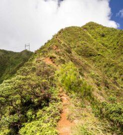 Kaau Crater Trail (Ka'au)