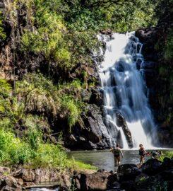Waimea Valley and Falls Trail